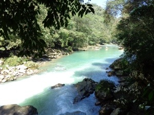Semuc Champey Reserve